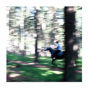 jezdce na koni ve snu viděti ...