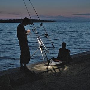 Podvečerný rybolov