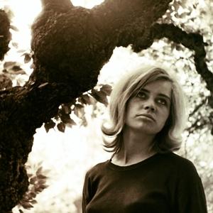 Dievča a starý strom