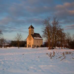 Pominovec v zime