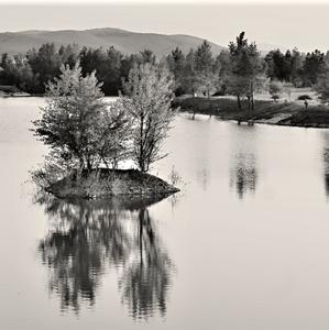 Pri rybníku ...