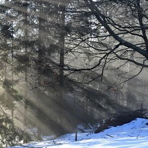 Prieniky slnka