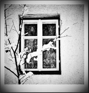 Susedovo okno