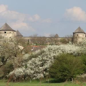 Bzovícky hrad