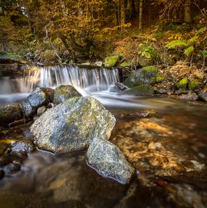 Jesenný potok