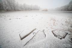 Ľadové kryhy