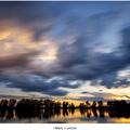 Oblaky v pohybe