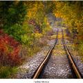 Farebná železnica