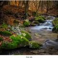 Prúd rieky