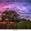 Farebná obloha