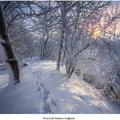 Prechod zimnou krajinou