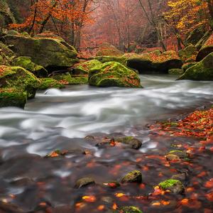 Podzimní zastavení