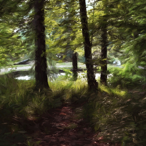 Impressum Forest