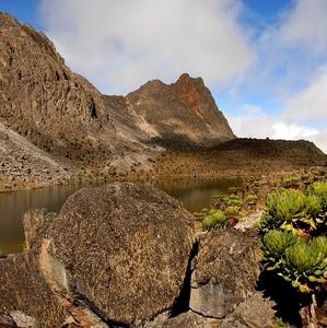 Cestou kolem Mt. Kenya