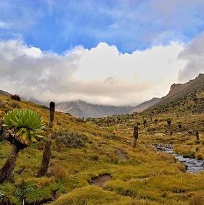 Cestou na Mt. Kenyu