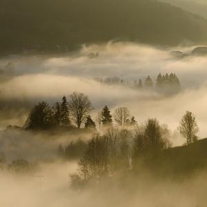 Krajina v hmle