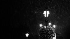 Biela noc