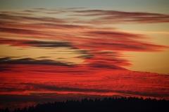 krvavy zapad slnka
