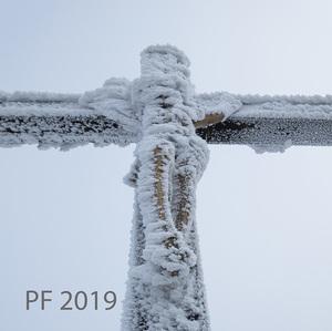 PF 2019