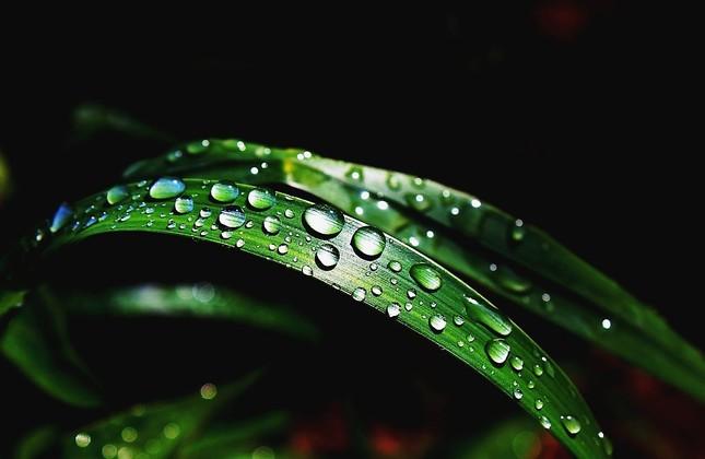 Po daždi......