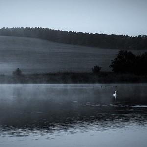 Ráno na rybníku....3.