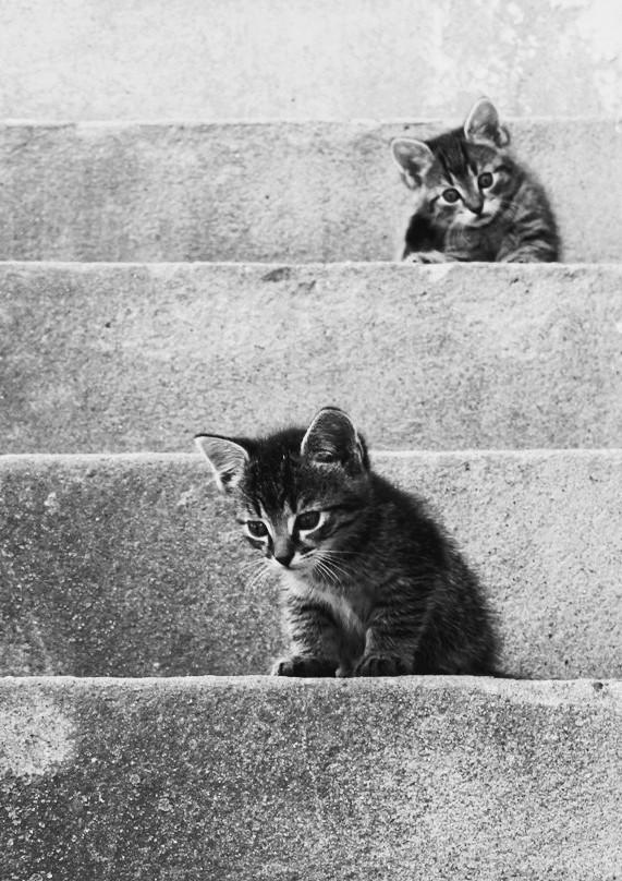 Na schodoch....2.