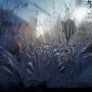 Zima minulého roku.