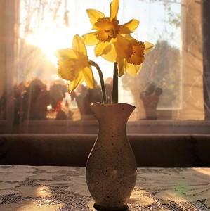 V rannom svetle........4.