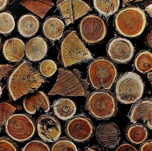 Mozaika z dreva.2.