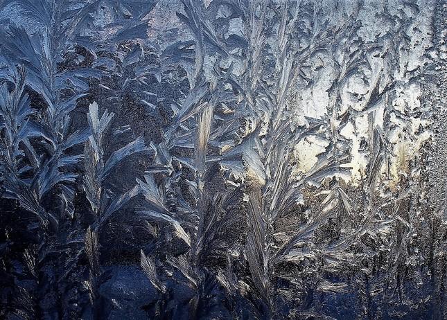 Mrazivý les na okne....