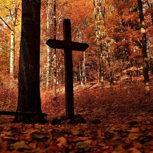 ... vítr tančil v listí....