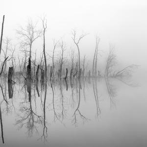 Mŕtvy rybník
