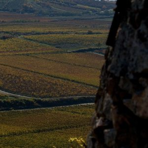 Tokaj Wine Region - Mad