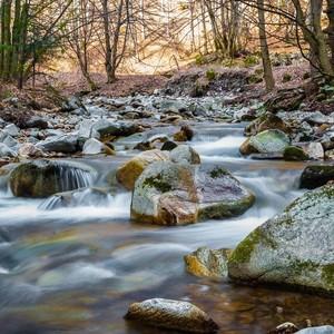 Šútovský potok 2