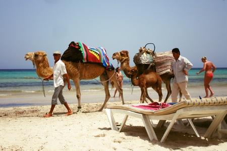 Ako a kde to všetko začalo? & cesta do Tuniska