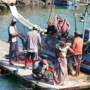 Rybári