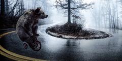 Cykloturistika pána maca