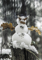 Smoking snowman
