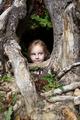 alice tree house