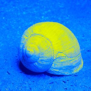žltá a modrá