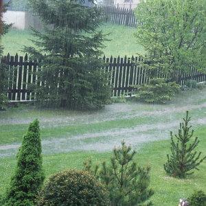 Letný dážď