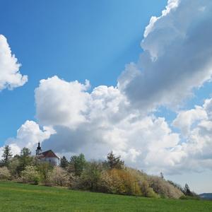 jaro na Uhlířském vrchu