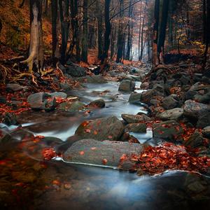 Podzimní nállady
