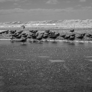 Pohoda na plazi