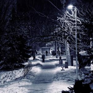 Zimny podvecer I