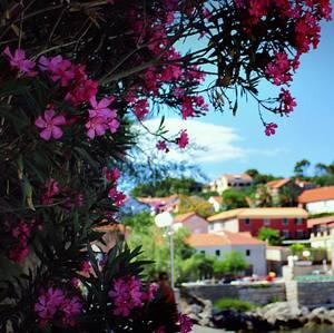 chorvátska dedina