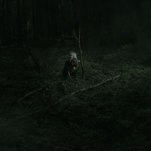 Forest Shaman I