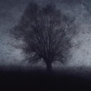 Osamelý stromeček