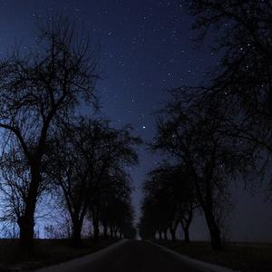 Nočná alej
