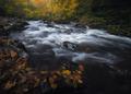 Rieka Neath